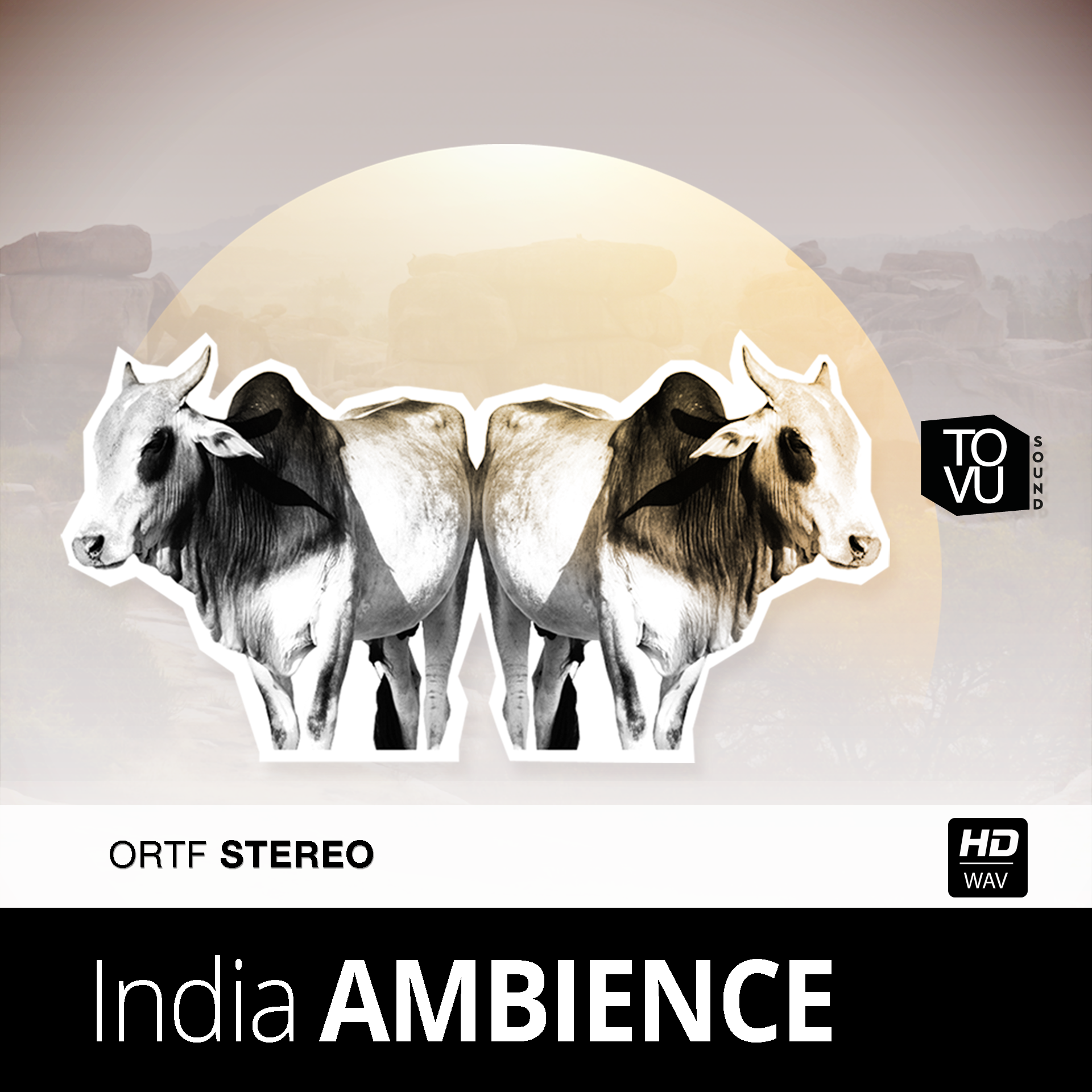 Indian Ambience
